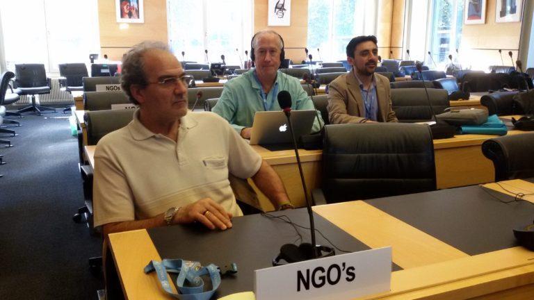 Comitato Diritti dell'Infanzia, FMSI presenzia ai lavori